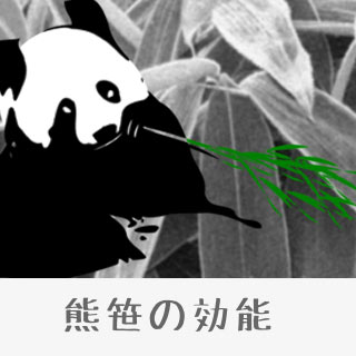 熊笹の効能と副作用の有無/クマザサは口臭にも効果的!