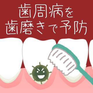 歯周病は歯磨きで予防!プラークの磨き残しを防ぐ方法