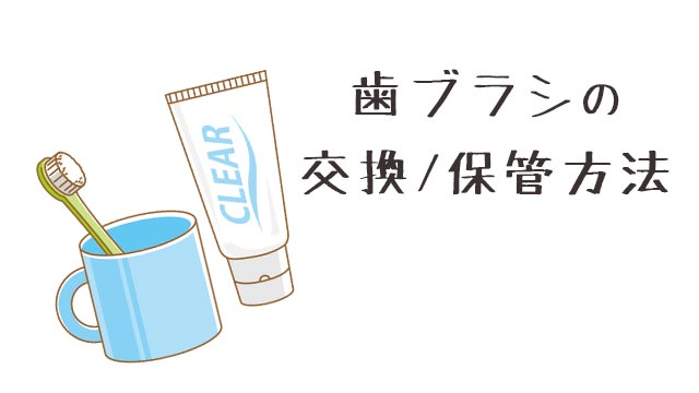 【歯ブラシの交換頻度と保管方法】古いと効果が4割低下!