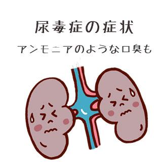 尿毒症の症状11/アンモニアのような口臭が発生することも!